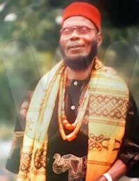 Linus Akonye Onyeneri Nwachukwu