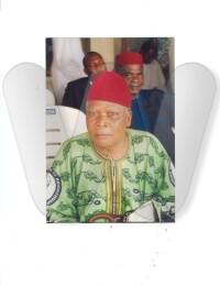 Michael Anyaegbunam Ndigwe