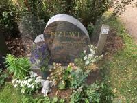 Henry Arvo Okenwa Nzewi